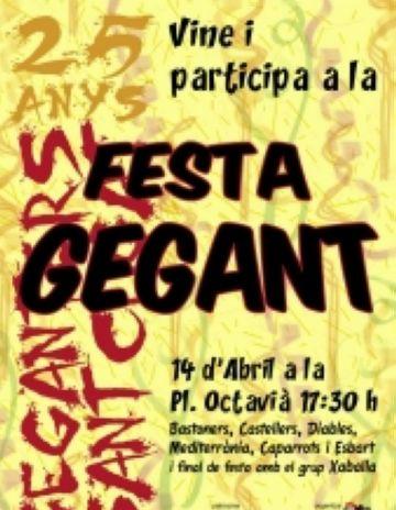 Les entitats de cultura popular s'uneixen per celebrar el 25è aniversari dels Geganters