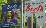 Imatge d'alguns dels cartells electorals del PP fets malbé