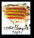 La iniciativa revindica  l'oficialitat del català a Europa