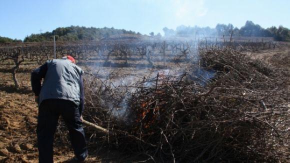 Queda prohibit fer foc en zones forestals fins al 15 d'octubre