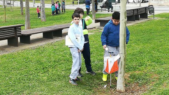 Sant Cugat acull aquest dimecres l'acte central del dia de l'educació física