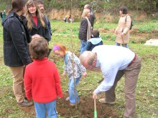Arrenca la 7a edició del Dia de l'Arbre a la Floresta