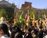 Centenars de santcugatencs omplen la plaça d'Octavià per viure el Diumenge de Rams