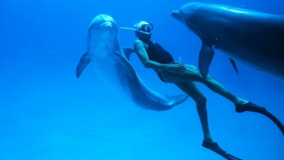 El documental del mes: 'Dolphin Man'