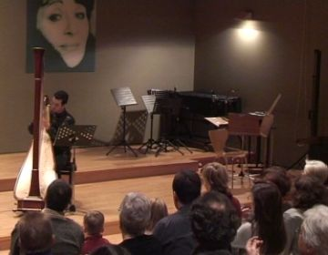El concert d'arpa de J.A. Domené reuneix 50 persones tot i coincidir amb dies festius