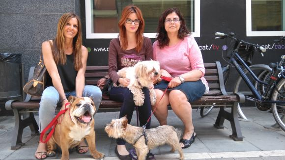 Anna Pons, Raquel Pérez i Lourdes Castro visiten Cugat.cat amb els seus gossos