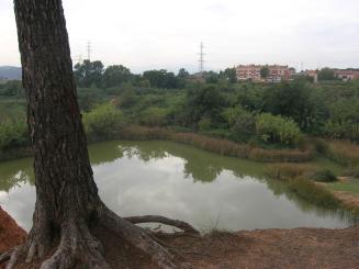 Imatge de l'estany dels Alous