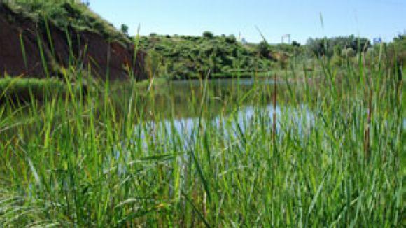 Sant Cugat es compromet amb la protecció de l'estany dels Alous