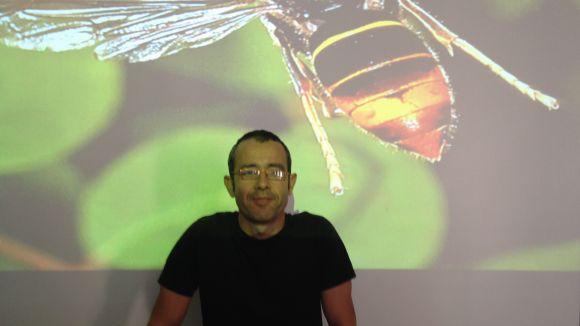 Esteve Miràngels: 'La vespa asiàtica ha vingut per quedar-se'