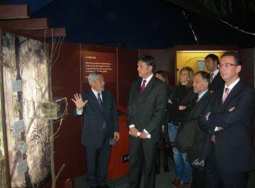 Oberta al públic l'exposició 'El bosc' de l'Obra Social la Caixa, a la plaça d'Octavià