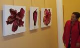 Algunes de les obres d'Isabel Cortés que es poden veure a l'Espai Lluís Ribas