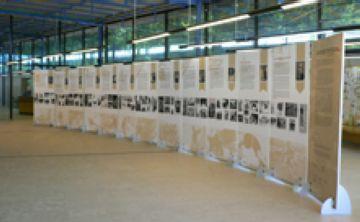 Últims dies per visitar l'exposició 'Esportistes catalanes del segle XX' a la Biblioteca