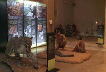 Una exposició al Museu mostra com era la vida fa un miló d'anys