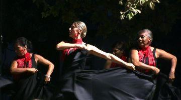 Moment de l'actuació de flamenc a la plaça del Coll