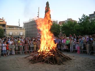 La Comissió de la Flama del Canigó recull llenya per la flama