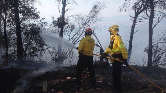 Un incendi crema 18 hectàrees a Collserola