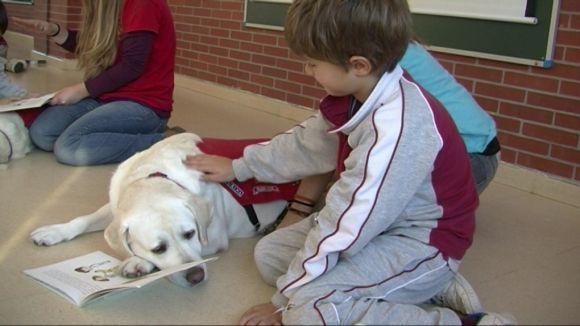 L'Àgora participa en un projecte educatiu amb gossos d'assistència