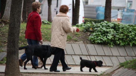 Els gossos de la ciutat tindran un espai d'esbarjo tancat de 3.000 metres quadrats a Coll Favà