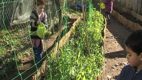 Sant Cugat esdevé referent en agroecologia escolar en un congrés mundial