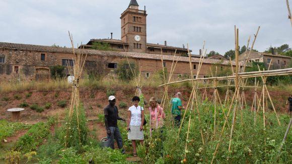 Els horts de Can Monmany continuen obrint portes a persones en risc d'exclusió