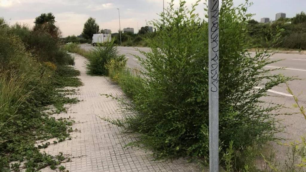 L'Ajuntament contractarà una empresa per fer el manteniment de les voreres