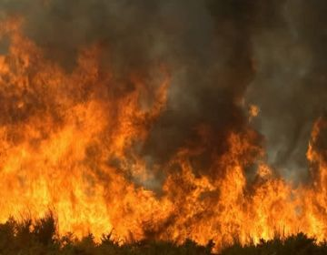 Es compleixen 15 anys dels incendis que van arrasar la Floresta i les Planes