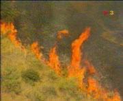 L'Ajuntament destina 330.000 euros a la prevenció del foc