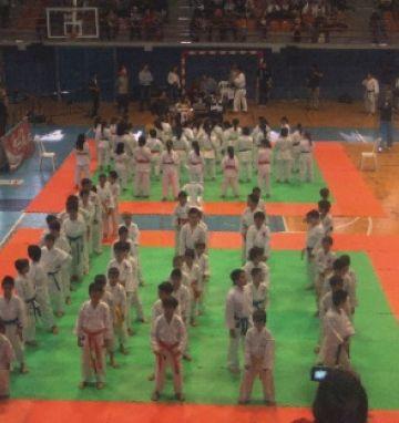 El Torneig de Karate Ciutat de Sant Cugat es consolida com a referent