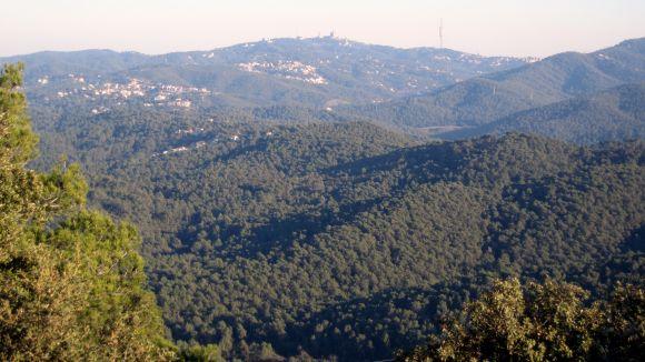 Sant Cugat i Barcelona mancomunaran serveis a les Planes a finals d'any