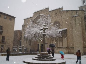 La neu va emblanquinar la ciutat i va deixar sense llum 400 llars