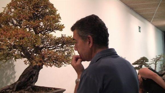 La Mostra de Bonsai de Sant Cugat es fa gran en públic, espais i activitats