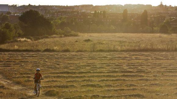 L'ordenança vol regular la presència de bicicletes a Collserola / Foto: Ajuntament