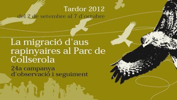 El Consorci de Collserola organitza observacions de les aus migratòries