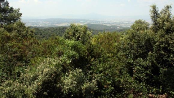 Activada la vigilància a la comarca per risc d'incendi forestal