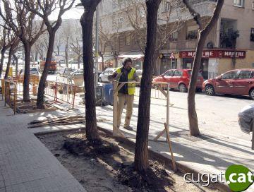 Comencen les obres per substituir els parterres d'un tram del passeig Torre Blanca