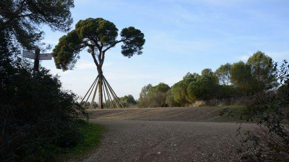 El col·lectiu Pi d'en Xandri + 20, banderers de Sant Medir, commemoraran l'efemèride de l'atac