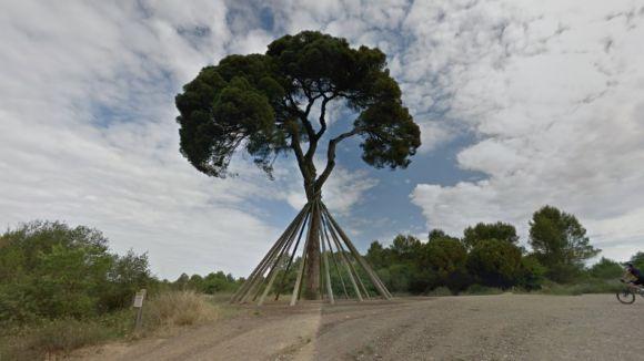 El Pi d'en Xandri, un dels 300 atractius turístics accessibles des del Google Street View