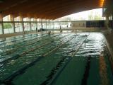 Comença el procés d'inscripció als cursos d'estiu de natació