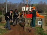 L'Ajuntament ha plantat enguany 546 arbres arreu del municipi