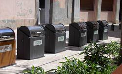 L'Ajuntament estudirà el servei de recollida de paper i cartró