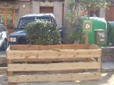 L'Ajuntament atribueix la baixa de les donacions al fet que els ciutadans reaprofiten els arbres de Nadal.