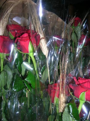 La rosa vermella segueix sent la reina de Sant Jordi