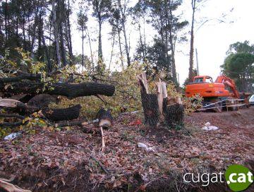El Mussol denuncia un 'atemptat ecològic' a Valldoreix