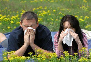 El fred i les intenses plujes d'aquest hivern poden augmentar els casos d'al·lèrgies
