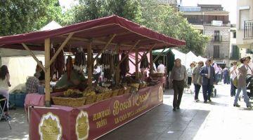 Els paradistes de la Fira de Sant Ponç, a favor de l'ampliació i varietat de productes de la mostra