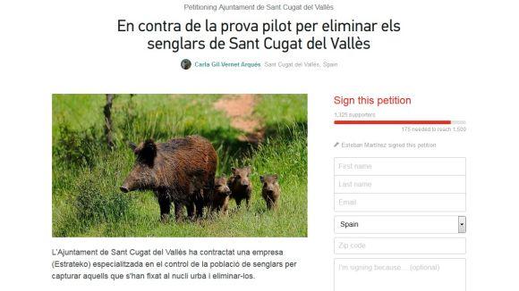 Change.org recull més de 2.500 suports contra l'eliminació de senglars a la ciutat
