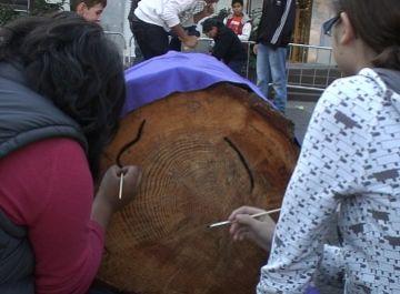 Una vintena de joves del Taller Jove Natura engalanen el tió de Sant Cugat
