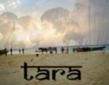 El grup Tara tanca aquest divendres el cicle 'Mou-te Primavera' a la plaça Barcelona