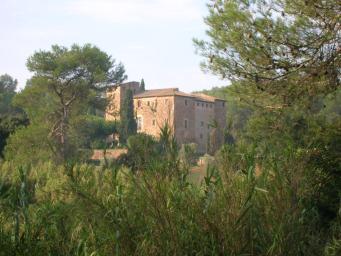 El procés municipal per protegir Torre Negra, pendent de la declaració del parc natural de Collserola