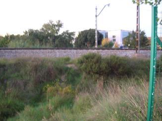 La manca d'una tanca permet travessar la via del tren